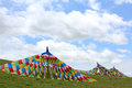 Tibet banner grassland green blue clouds Stock Image