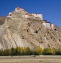 Tibet - Gyantse Fortress Stock Photo