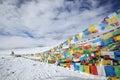 Tibet: tibetan prayer flags Royalty Free Stock Photo