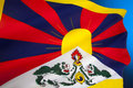 Tibetan flag flag of free tibet the snow lion was introduced by the th dalai lama in since the s it is used a symbol the Stock Photos