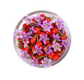 Tibetan goji berries fresh color in a glass container Royalty Free Stock Photos