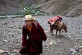 Tibetan pilgrim in Dolpo, Nepal Royalty Free Stock Images