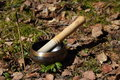 Tibetan singing bowl incense in a forest glade Stock Photography