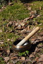 Tibetan singing bowl incense in a forest glade Stock Photos