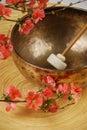 Tibetan singing bowl mallet Royalty Free Stock Photo