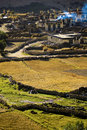 Tibetan Village Stock Photos