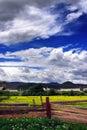 Tibetan villages Stock Photo