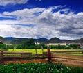 Tibetan villages scenery Stock Photography