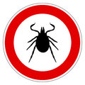 Tick animal sign isolated on white background Royalty Free Stock Images