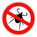 Tick animal sign isolated on white background Royalty Free Stock Photos