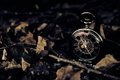 Tick Tock - Vintage Pocket Watch with Fall Leaves Royalty Free Stock Photo