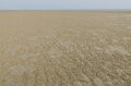 The tidal flat in the ebb tide time on clear day Stock Photos