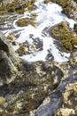 Tidal Pool Aruba Royalty Free Stock Photo