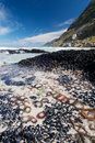 Tidal Pool Cape Town Stock Photo