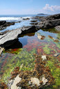 Tidal pools  Stock Photo