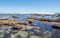 Tidal Pools: Blue Holes, Western Australia Royalty Free Stock Photo