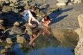 Tide pool exploration near Bird Rock, Laguna Beach, CA. Royalty Free Stock Photo