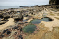 Tide pools Stock Photography