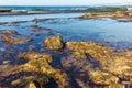 Tide pools tidal near la jolla california at low Royalty Free Stock Photography
