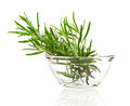 Tied fresh rosemary