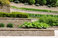 Tiered Retaining Wall Royalty Free Stock Photo