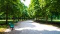 Tiergarten berlin bench and way in in summer Royalty Free Stock Images