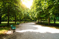 Tiergarten berlin bench and way in in summer Stock Image