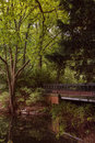 Tiergarten berlin germany next to a pond Royalty Free Stock Photography