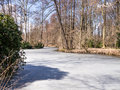 Tiergarten berlin a lake in in winter Royalty Free Stock Images