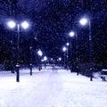 Tiergarten berlin by night a way in in winter Stock Photos