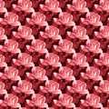 Tiffany rose wallpaper seamless or fabric pattern of tea roses Stock Photography