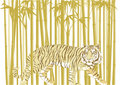 Tiger in bamboo forest Royalty Free Stock Photography
