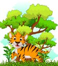 Tiger cartoon with forest background illustration of Royalty Free Stock Image