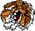 Tiger Cartoon Mascot with Snarling Teeth Royalty Free Stock Photos
