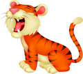 Tiger cartoon roaring illustration of Stock Images