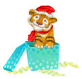 A tiger cub sits near boxes with gifts Royalty Free Stock Photo