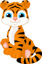 Tiger cute and friendly sits on the priest Royalty Free Stock Photo