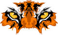 Tiger Eyes Vector Graphic Royalty Free Stock Photos