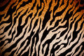 Tiger fabric textile texture cloth Royalty Free Stock Photo