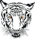 Tiger face black and white with the yellow eye illustration design eps Stock Photo