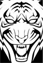 Tiger face illustrator design eps Royalty Free Stock Photo