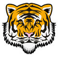 Tiger face stylized isolated on white Royalty Free Stock Photo
