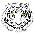 Tiger face vector illustration of a Royalty Free Stock Photography
