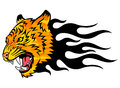 Tiger on fire head of a in tongues of flame in the form of a tattoo anger this is vector illustration ideal for a mascot and Stock Photography