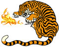 Tiger with fire illustration isolated on white background Royalty Free Stock Photo