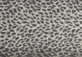 Tiger fur wallpaper Stock Photo