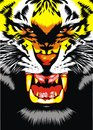 Tiger head illustrated on the black background Royalty Free Stock Images