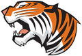 Tiger head roaring side view vector graphic cartoon clip art illustration of a in a rendered in a style Stock Image
