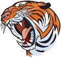 Tiger head roaring vector cartoon illustration clip art of a Stock Image