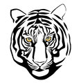 Tiger head vector illustration of Stock Images